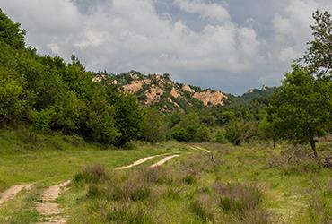 Melnik - Zlatolist eco trail