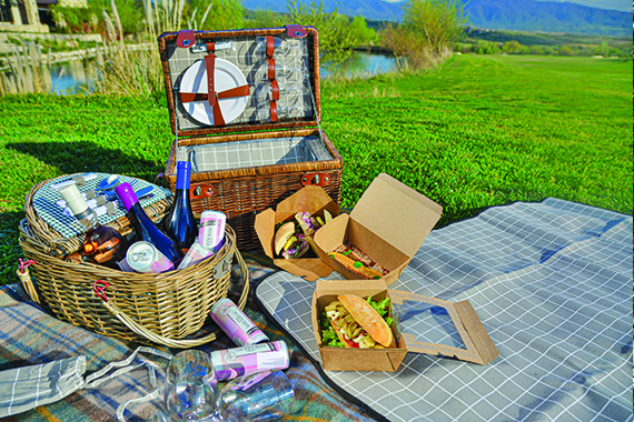 Picnic in pink